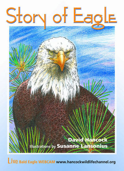 Story of Eagle Activity & Coloring Book