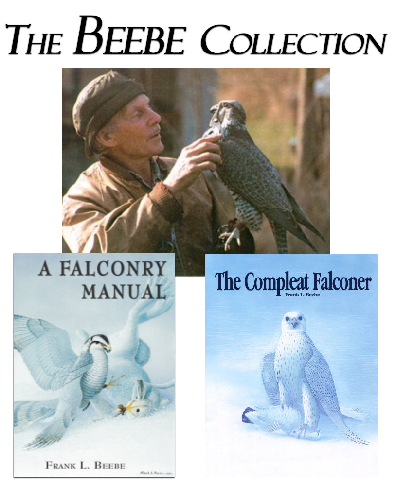 The Beebe Collection Library Set