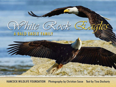 White Rock Eagles: a Bald Eagle family