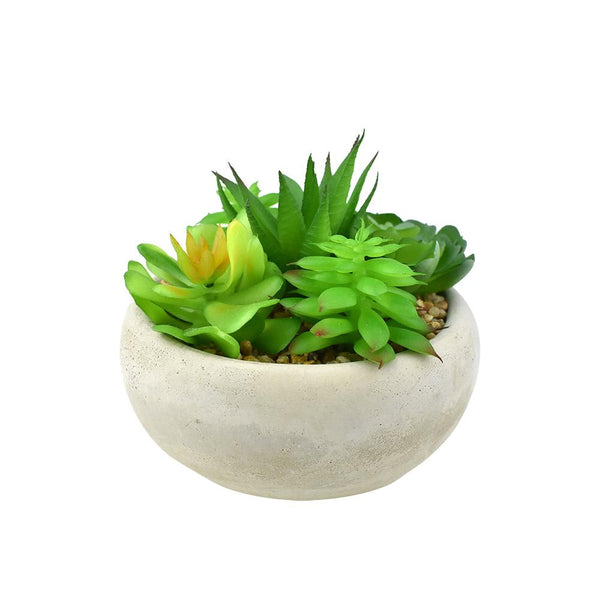 Artificial Mixed Succulents with Pot, Green, 4-3/4-Inch