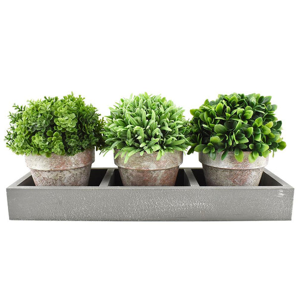 Artificial Mixed Greenery with Pots in Tray, 13-1/4-Inch, 3-Piece
