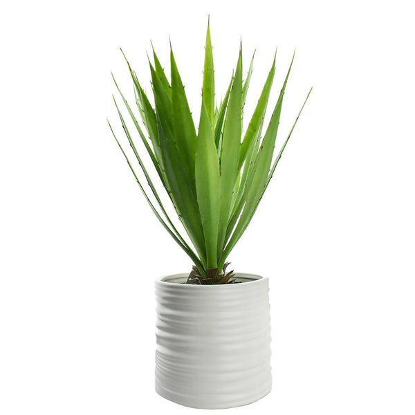 Artificial Yucca with Pot, 17-Inch