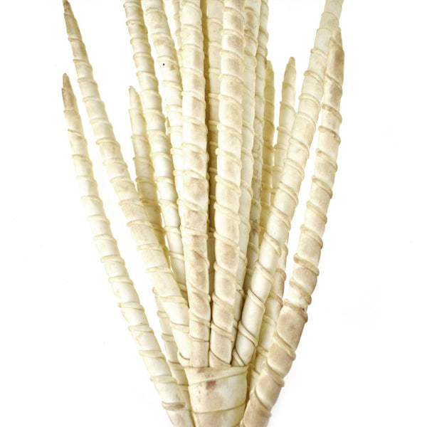 12 Pack, Artificial Foam Bamboo Willow Wired Bush, Beige, 27-Inch