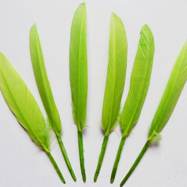 12-Pack, Duck Feather Decorative, 14-inch, 10-piece, Apple Green