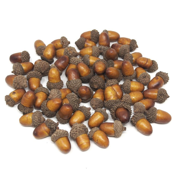 12 Pack, Artificial Decorative Acorns Fall Harvest, 1-Inch, 60-Count