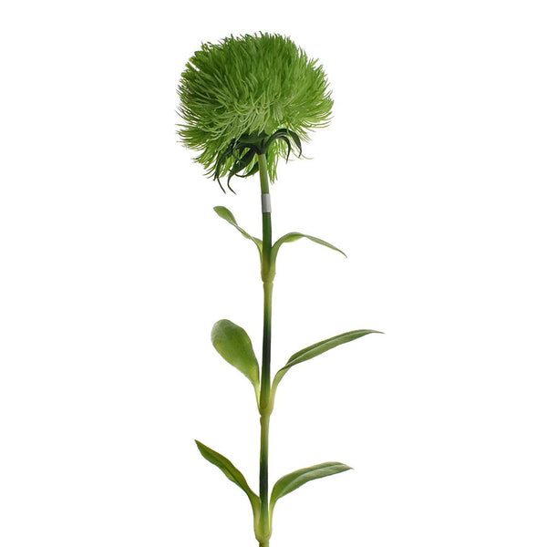 Artificial Dianthus Spray, Green, 19-1/2-Inch