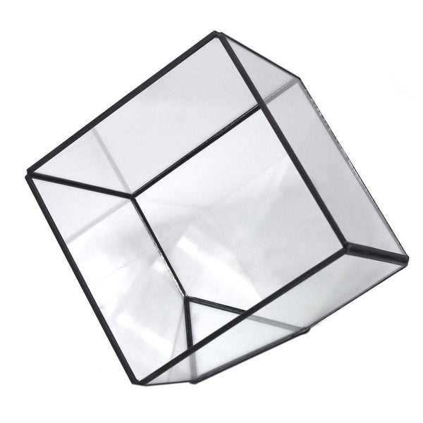 Black Geometric Glass Terrarium Display Box, Tilted Cube, 6-Inch