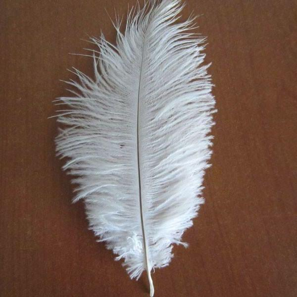 12-Pack, Ostrich Feather Decorative Centerpiece, 15-inch, White