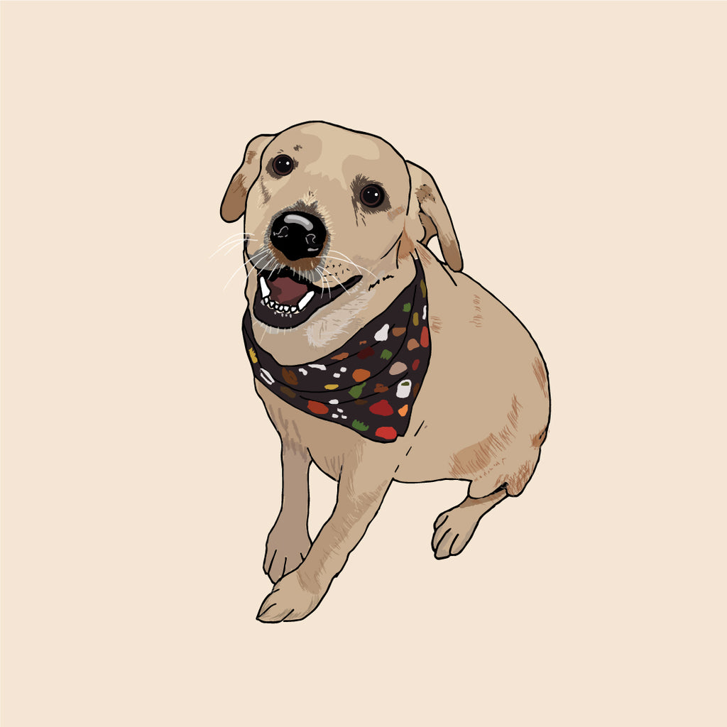 Commissioned Pet Portrait