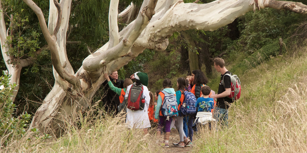 school holiday programme, Wilderkids