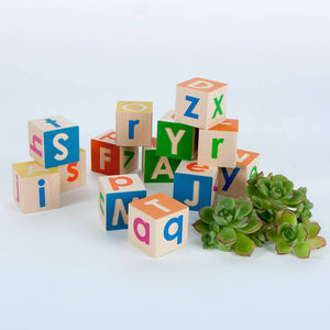 Upper and Lower Case Alphabet Blocks General Uncle Goose