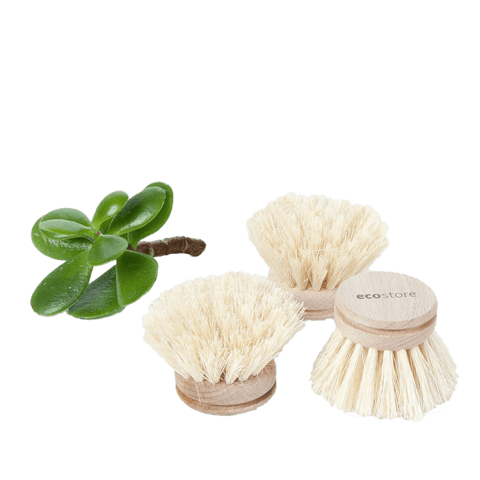Ecostore Dish Brush Replacement Head General EcoStore