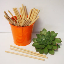 Load image into Gallery viewer, Earthware Bamboo Straws (Singles) General Earthware