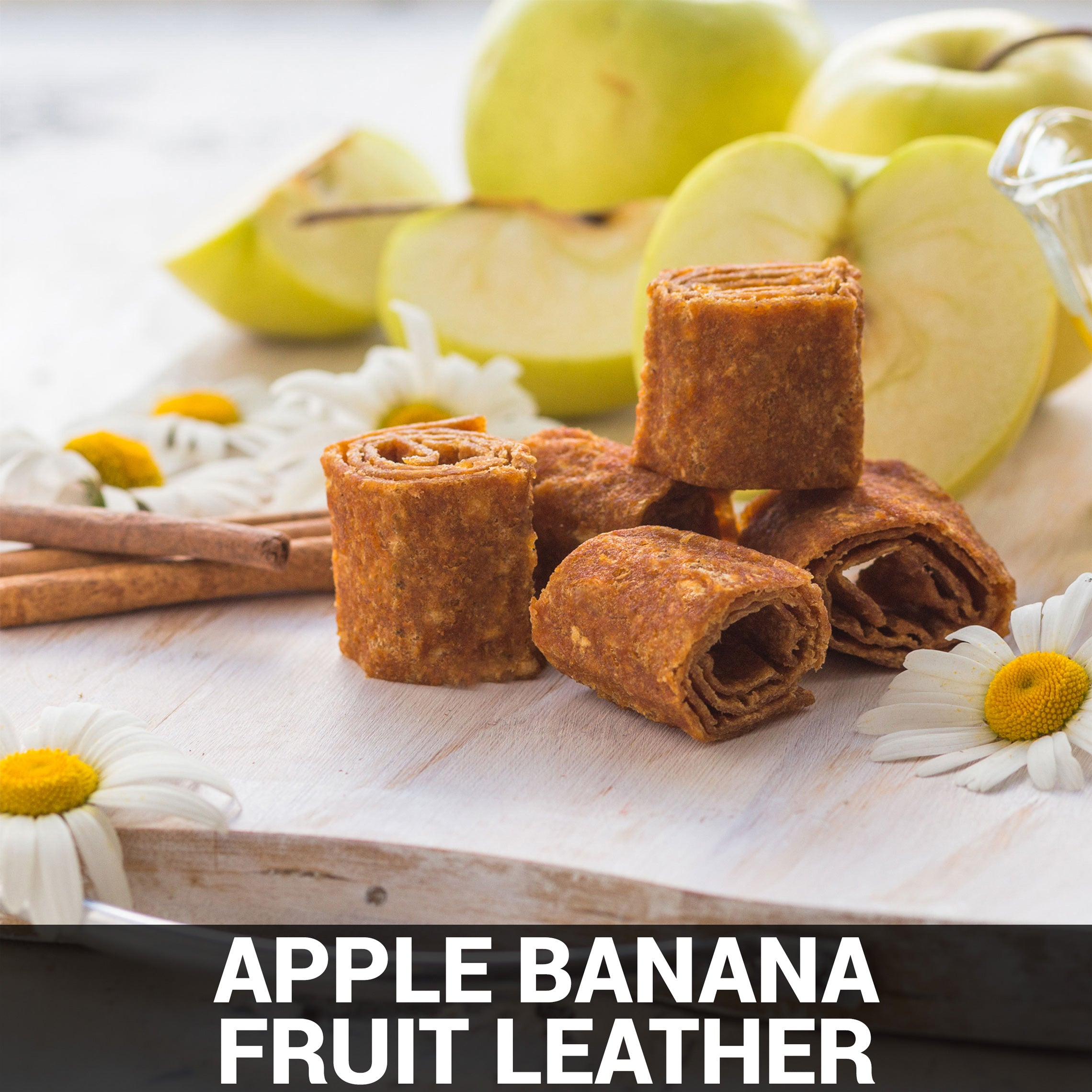 Apple Banana Fruit Leather Recipe - Foods Alive