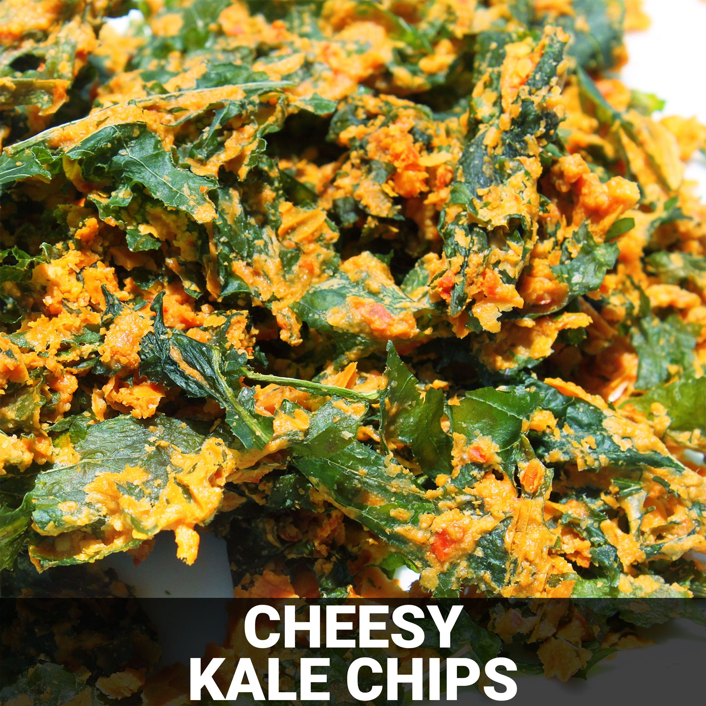 Cheesy Kale Chips Recipe - Foods Alive