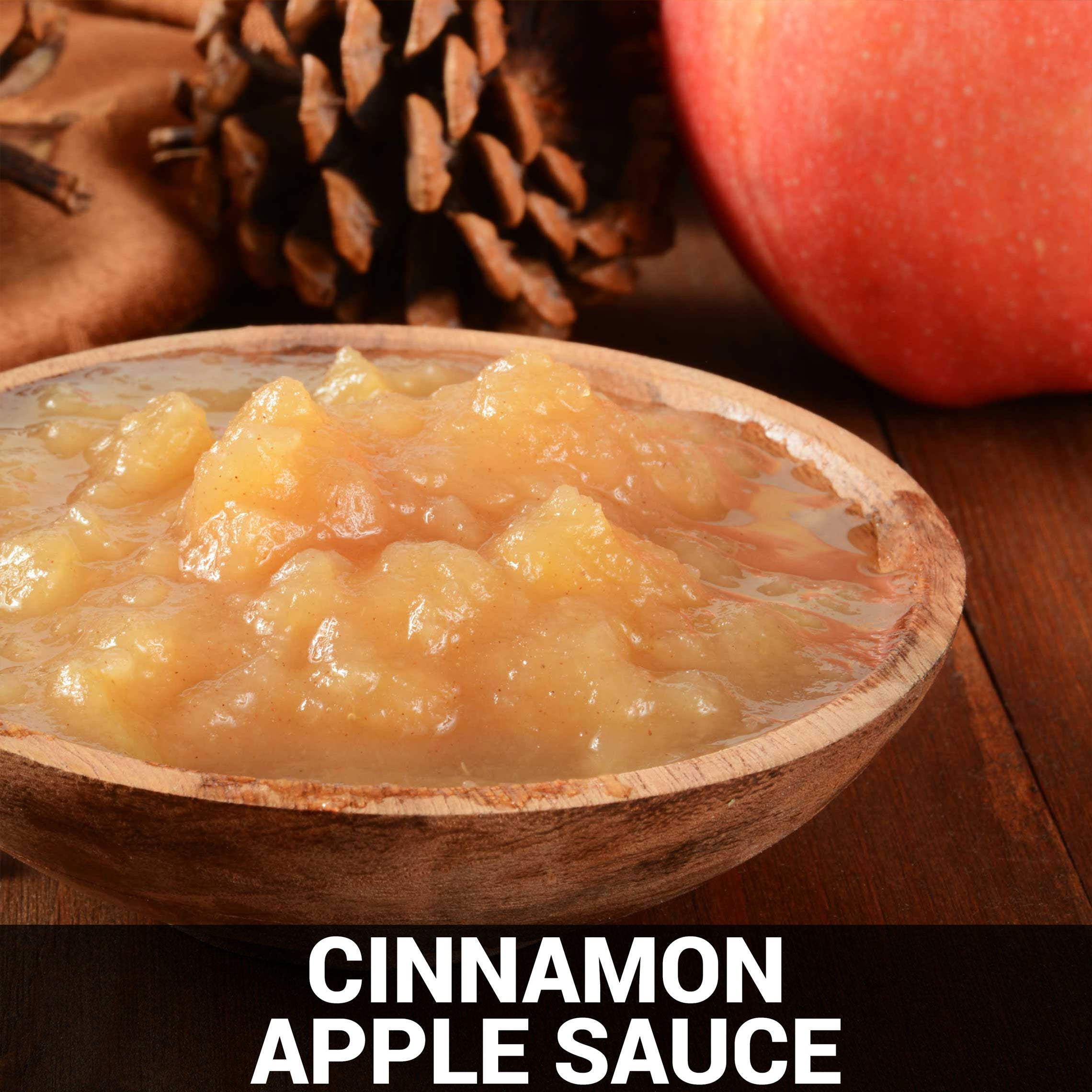 Cinnamon Apple Sauce Recipe - Foods Alive