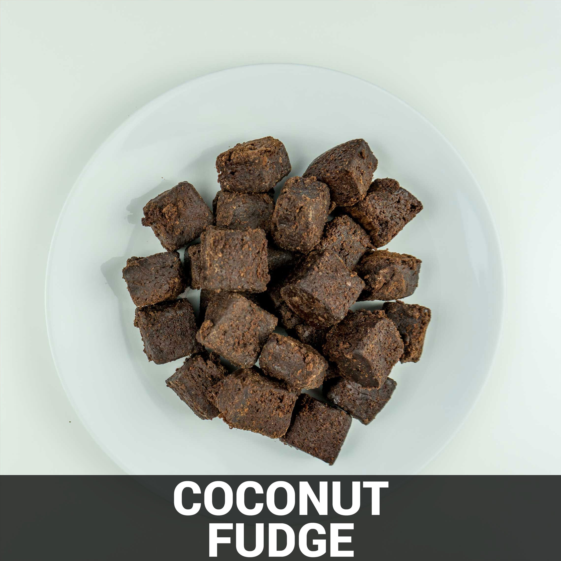 Coconut Fudge Recipe - Foods Alive