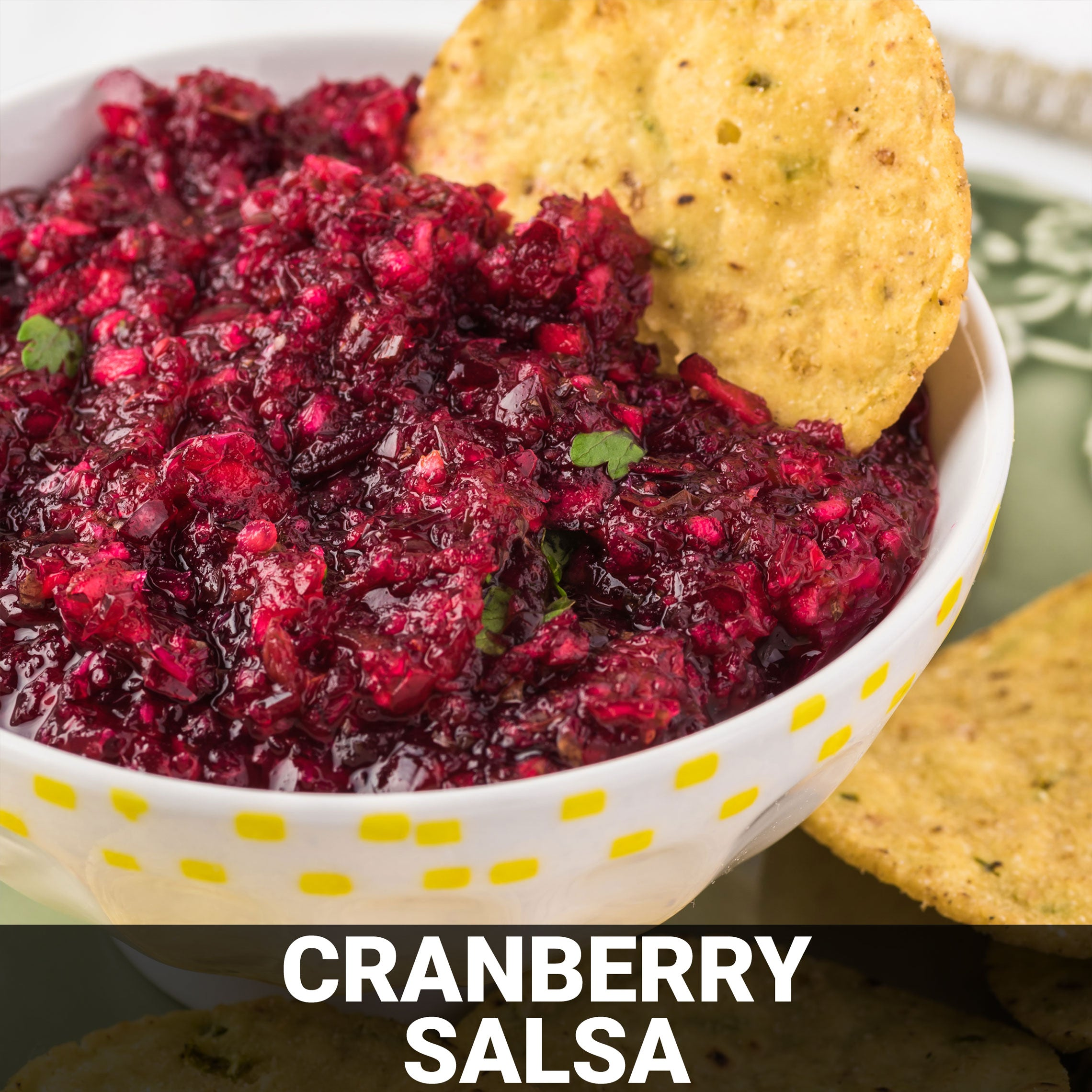 Cranberry Salsa Recipe - Foods Alive