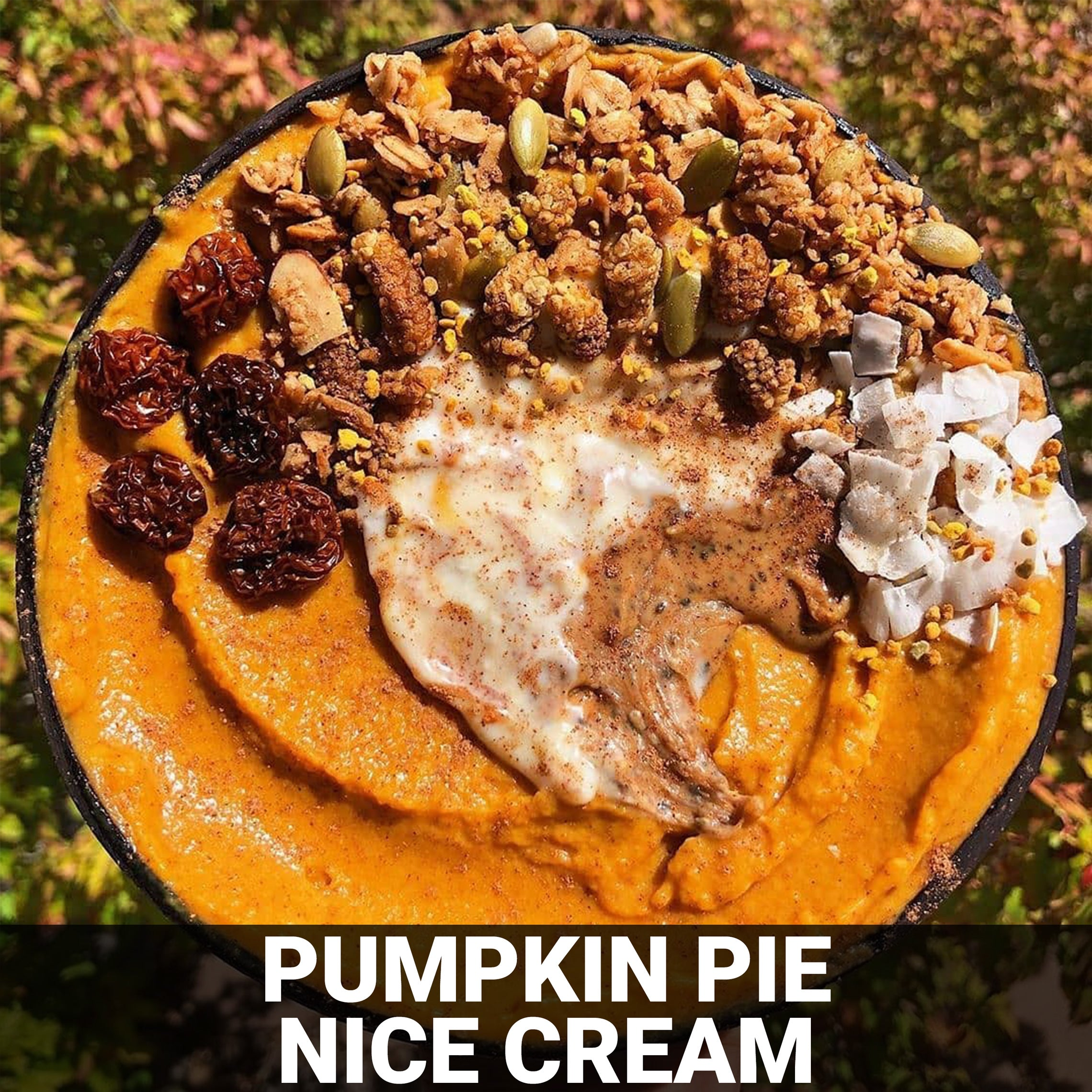 Pumpkin Pie Nice Cream Salad Recipe - Foods Alive