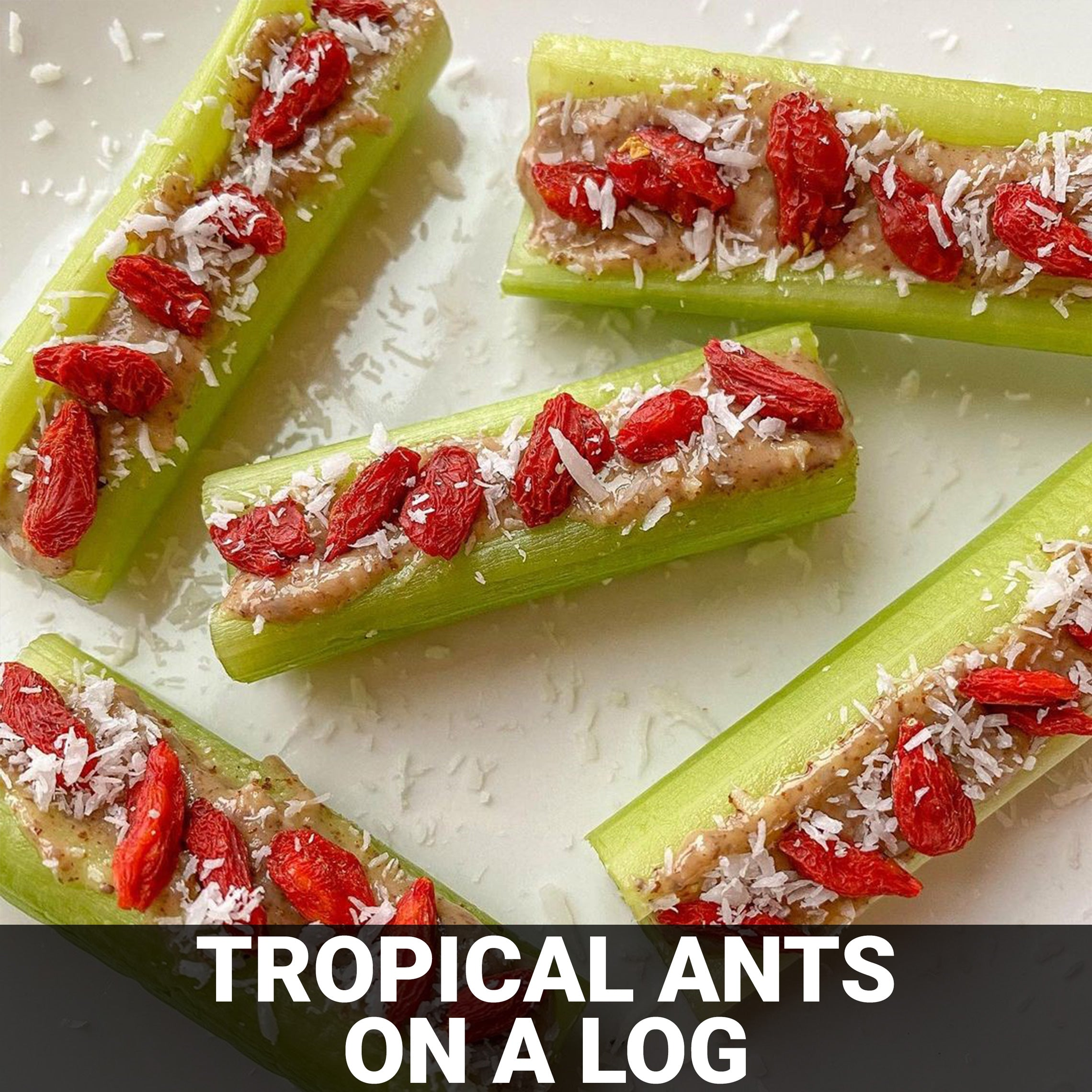 Tropical Ants On A Log Recipe - Foods Alive
