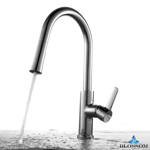 Single Handle Pull Down Kitchen Faucet - Chrome F01 201 01