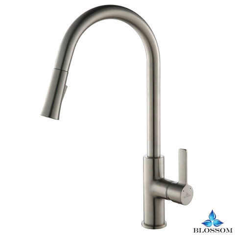 Single Handle Pull Down Kitchen Faucet - Brush Nickel F01 201 02