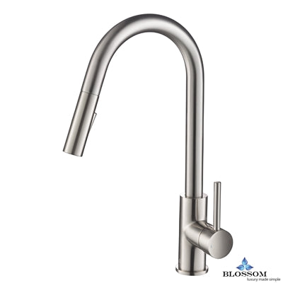 Single Handle Pull Down Kitchen Faucet - Brush Nickel F01 206 02