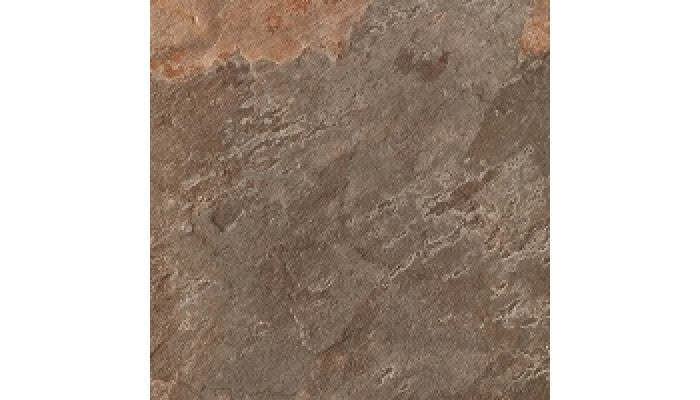 Rex Leaves Series 12 x 12 Chestnut Porcelain Tile