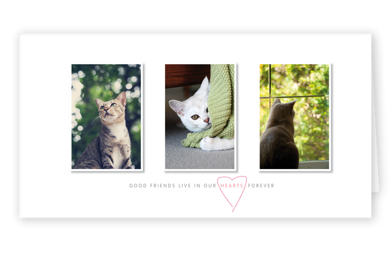 Sympathy Cards for Pets - Hearts Series