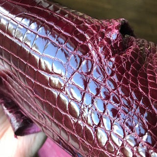 American alligator skin genuine