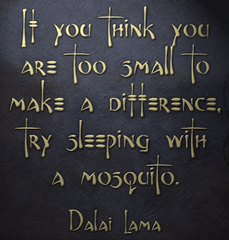 Dalai Lama quote: If you think you are too small to make a difference, try sleeping with a mosquito.