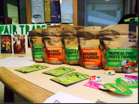 Level Ground Trading fair-trade organic tropical dried fruit