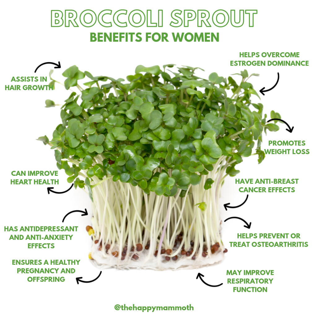 Broccoli Sprout Benefits