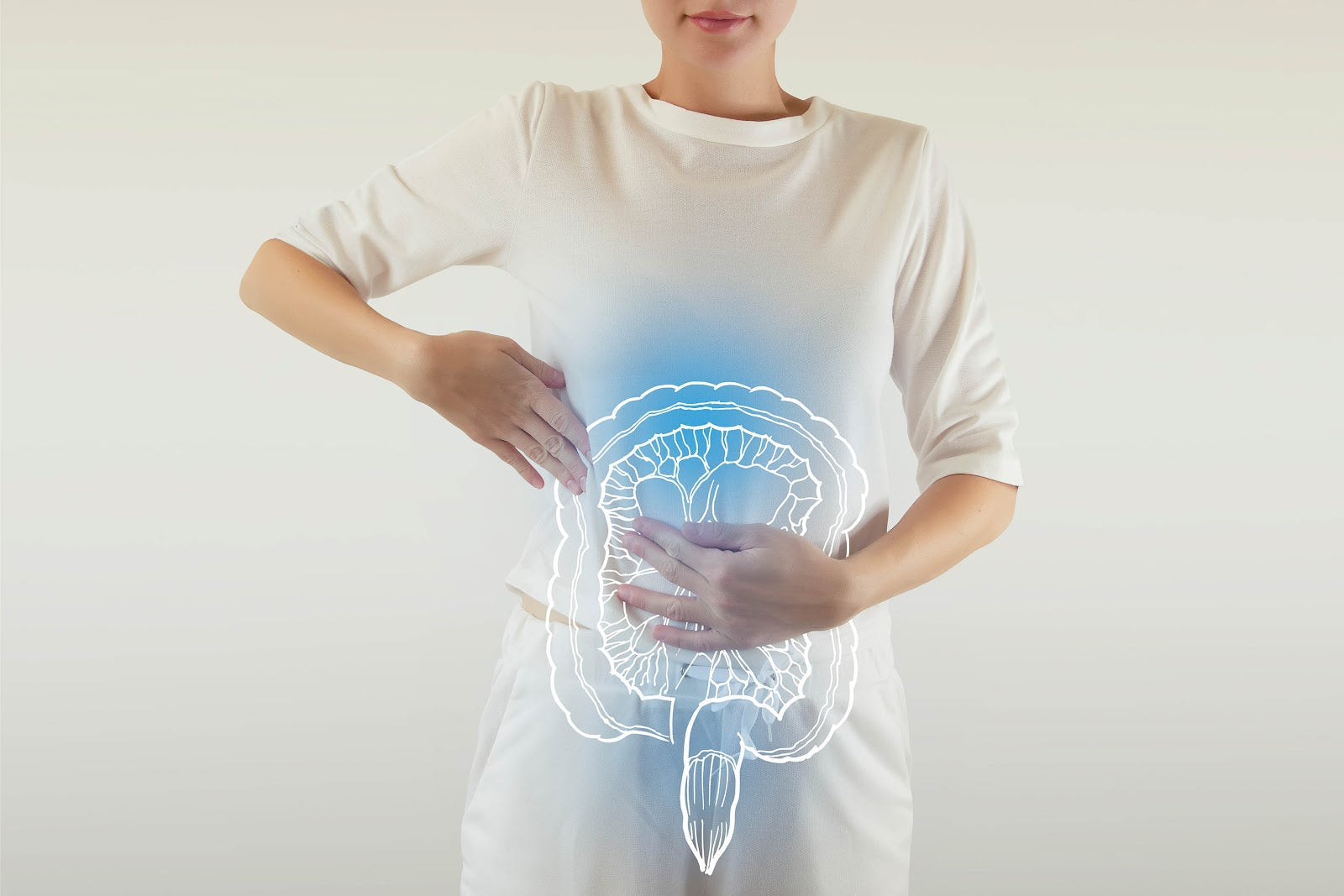 Best Time to Take Probiotics: Digestive illustration on a woman's body