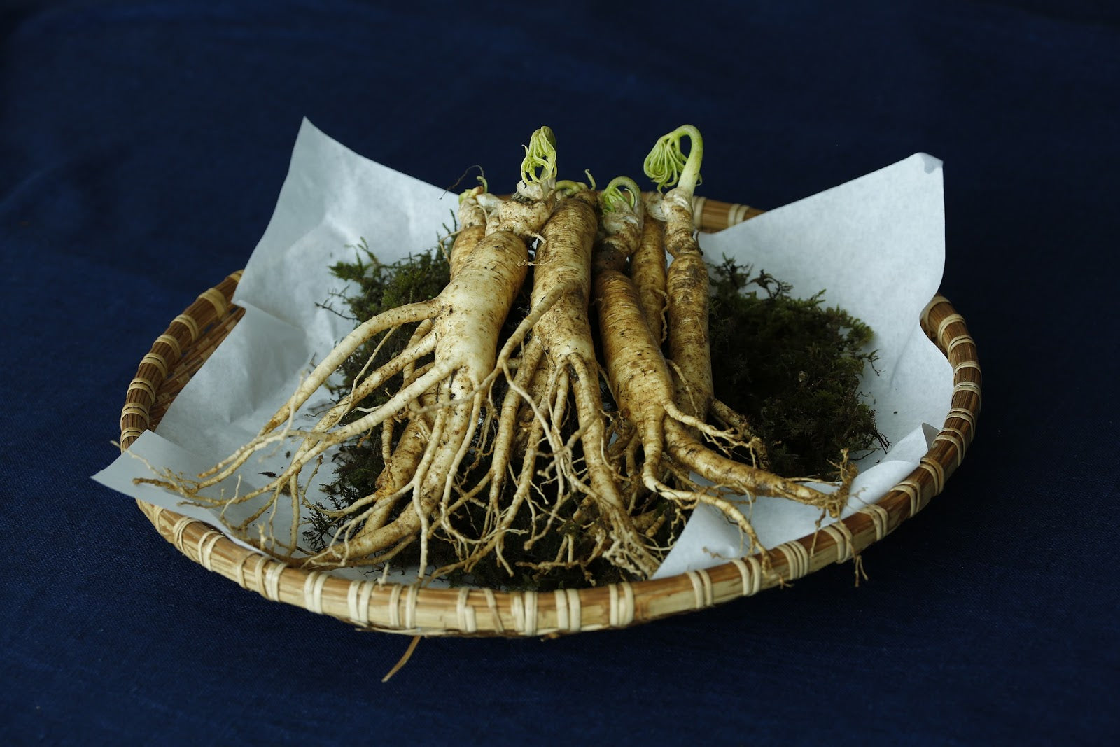 Menopause supplements: ginseng