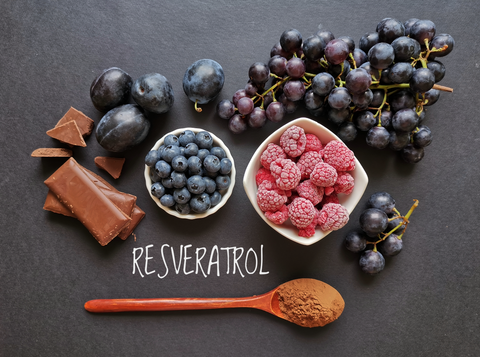 Resveratrol surrounded by blueberries raspberries and grapes