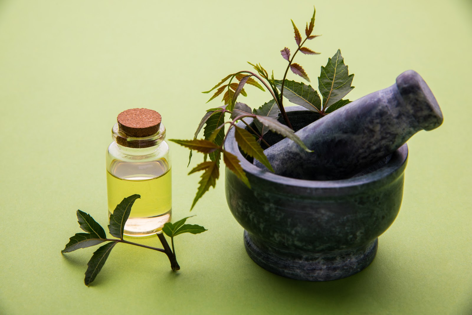 Antiviral herbs in a mortar and pestle next to a bottle of neem oil