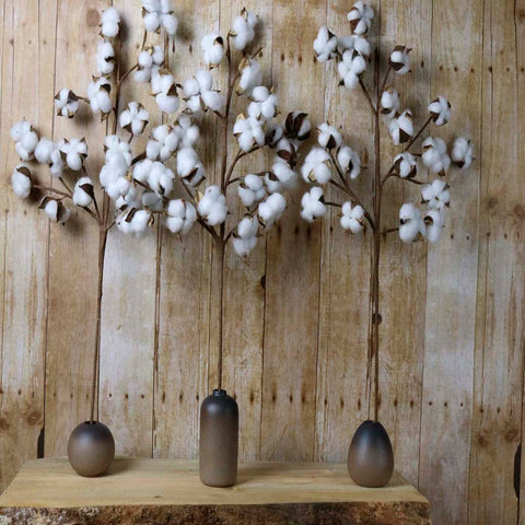 Cotton Stem: Cotton Branches | Burlap Basement