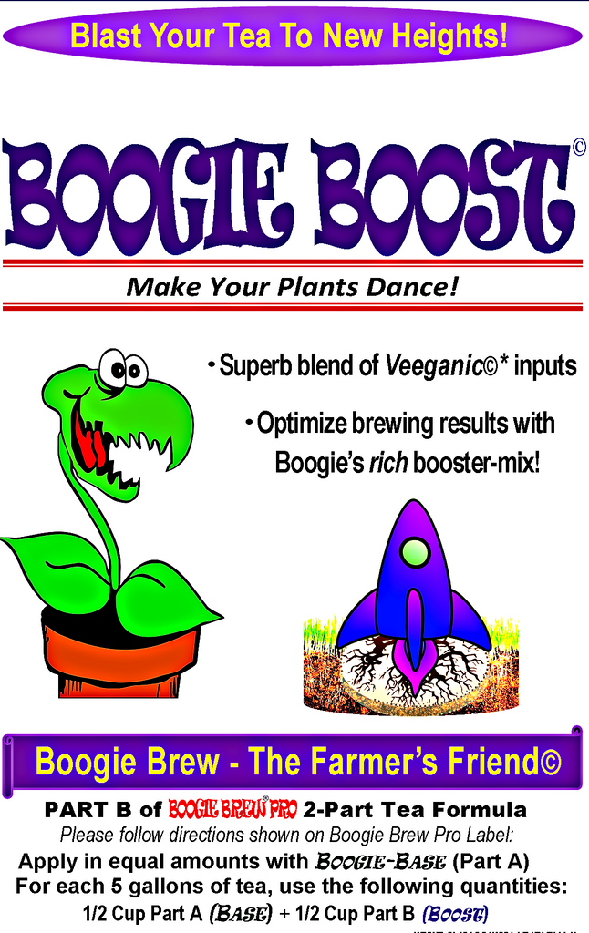 Boogie Boost