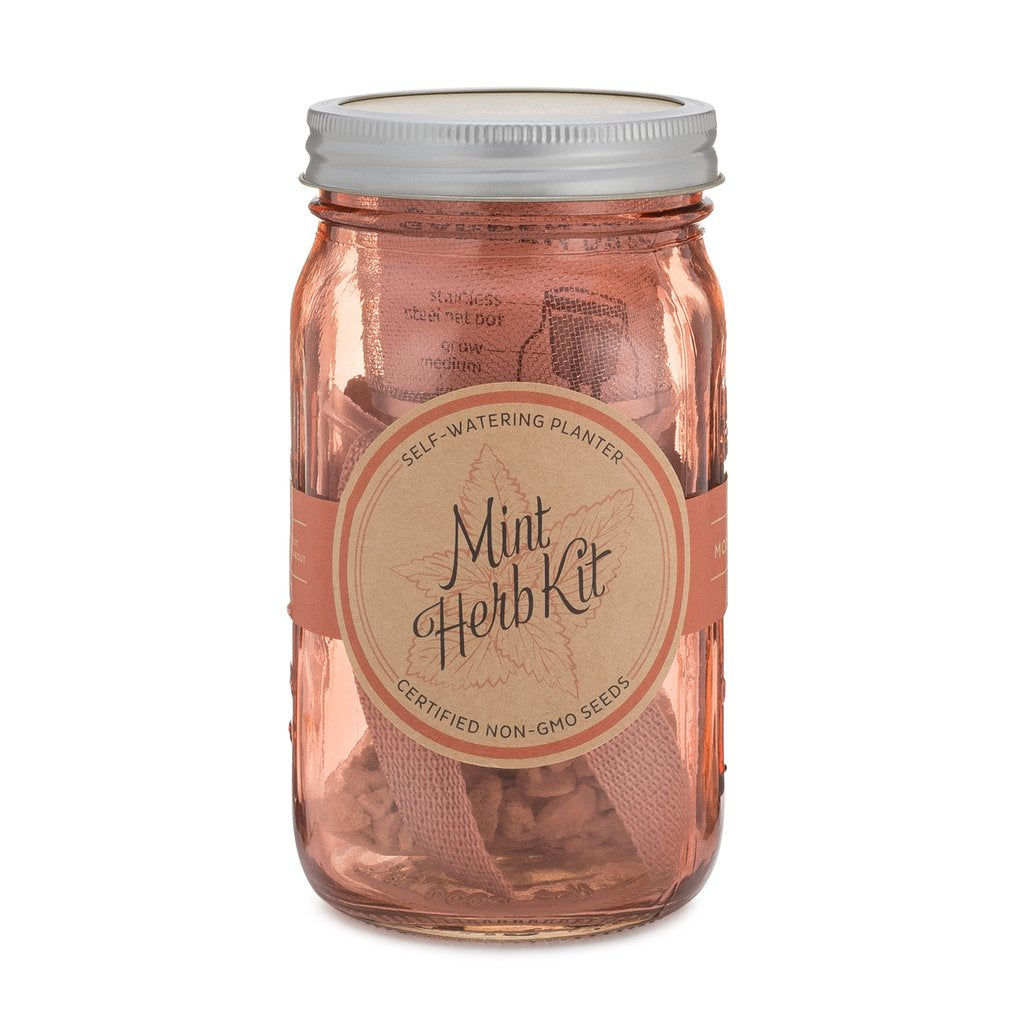 Garden Jar - Mint Clearance
