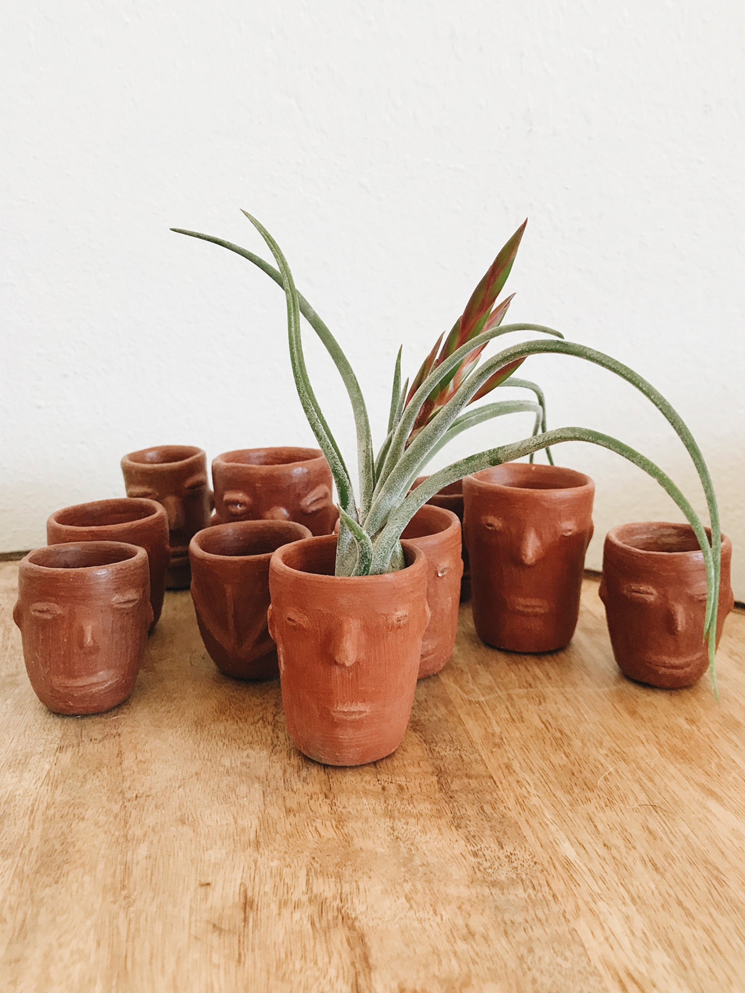 In Meditation Face Cups/ Planters
