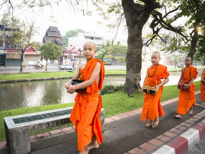 Chiang Mai City Cycling Excursion
