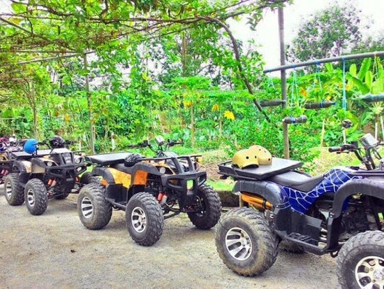 Atv at Desaru Fruit Farm