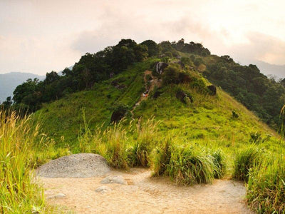 broga hill hiking
