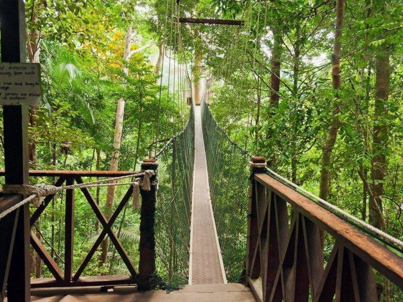 Taman Negara Adventure Hostel Package (3Days/2Nights) | Malaysia ...