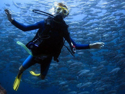Diving with a school fishes in Langkawi