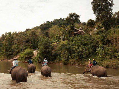 Elephant riding in the river at Ban Huay Fai