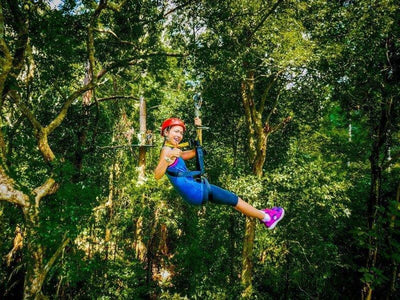 Flying fox at Langkawi Island