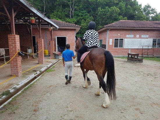 Horse riding guided by a trainer in Bukit Tinggi