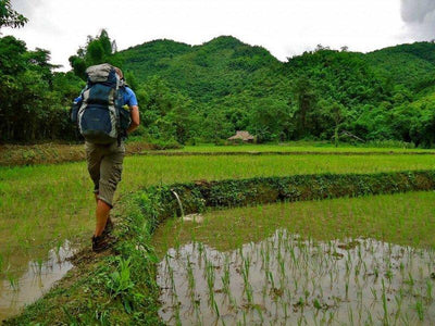 Man trekking through the paddy fields in Laos